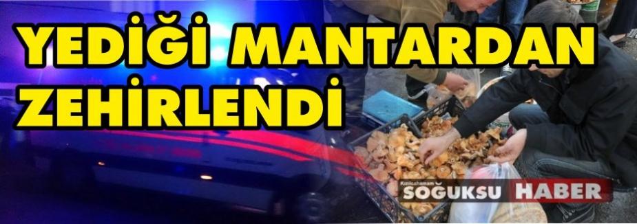 DİKKAT MANTAR ZEHİRLENMESİ