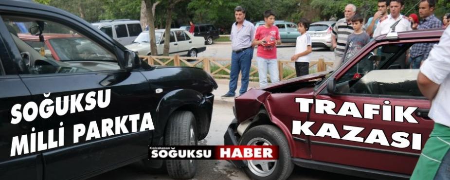 MİLLİ PARKTA KAZA