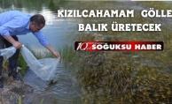KIZILCAHAMAM GÖLLERİNE 29 BİN BALIK
