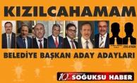 AK PARTİ'DE TEMAYÜL HEYECANI...