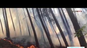 kızılcahamamda yangın